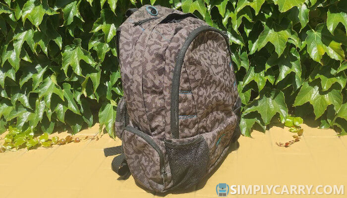 Backpacks pros and cons